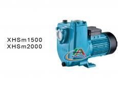 Bơm cánh đĩa tự hút XHSm1500 / XHSm2000