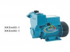 Bơm cánh đĩa áp cao XKm60-1 / XKm80-1